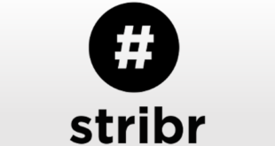 marketing-tools-product-review-stribr