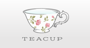 BI Tools Product review-Teacup Analytics