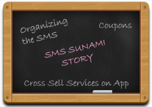 SMS-Sunami-Generating-Business-Mearly-by-Organizing-SMSes