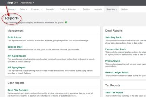 SageOne-Reports