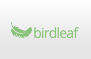 Email-Tools-Product-review-birdleaf