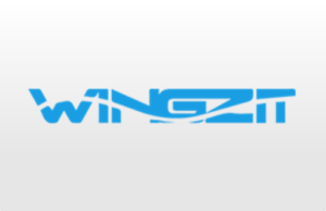 Project-Management-tools-Product Review-wingzit